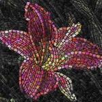 vidy-mozaiki1